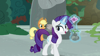 "Rarity ""not everything is a competition"" S7E25"