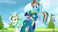 Sky Stinger --I don't need your help!-- S6E24