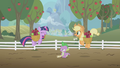Twilight and Applejack excited S1E03.png