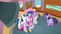 Twilight and her family agree to take the tour S7E22.png
