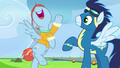 """Windy """"mom of the best Wonderbolt ever!"""" S7E7.png"""