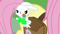 Angel hops out of Fluttershy's saddlebag S9E18