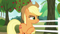"""Applejack """"his team is gonna beat ours"""" S6E18.png"""