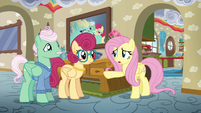 Fluttershy --always ends up being your place-- S6E11