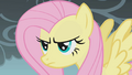 Fluttershy Annoyed S1E7.png