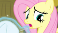 Fluttershy reluctant S4E14.png