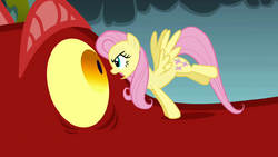 Fluttershy stares at the dragon S1E07