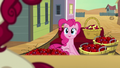 Pinkie on the carriage S5E11.png