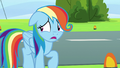 "Rainbow Dash ""I can just come back later"" S6E7.png"