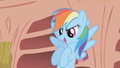 Rainbow Dash attempting to boost morale S1E7.png