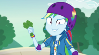 Rainbow Dash holding shredded lettuce EGDS32