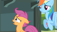 Scootaloo 'just because I couldn't fly' S4E05
