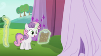 Sweetie Belle --it doesn't have to be yellow-- S6E14