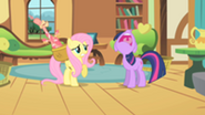 201px-Twilight groans angrily at Fluttershy S01E22