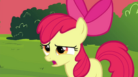 "Apple Bloom ""pretty nice of you guys"" S4E15"