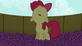 Apple Bloom looking up while in the grape trough S5E17.png