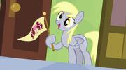 Derpy holding Ponyville flag S04E10