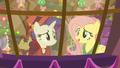 "Flutterholly ""a perfect Equestria"" S06E08.png"