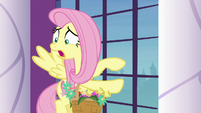 "Fluttershy ""courtyard is full of swans"" S9E13"