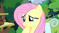 Fluttershy worried about Pinkie Pie S8E18