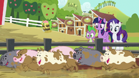 Pigs following Applejack's corn bait S6E10
