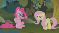 Pinkie Pie Stop Hammertime S01E09.png