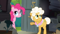 Pinkie Pie enters Goldie's house S4E09