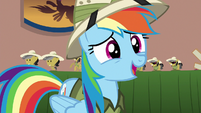 Rainbow Dash --this is the...-- S6E13