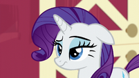 Rarity raises an eyebrow S6E10