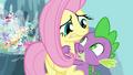 Spike hugging Fluttershy S4E16.png