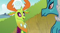 Thorax impressed by Ember's assertiveness S7E15