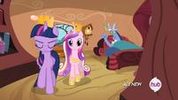 Twilight Cadance y Discord