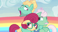 """Zephyr Breeze """"what Mom and Dad want"""" S6E11.png"""