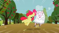 Apple Bloom Sheep S2E5