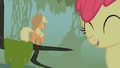 Applejack ignored by Apple Bloom S1E09.png