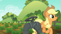 Applejack trots to third irrigation valve S6E10