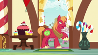 Big Mac -this is why I don't like talkin'!- S8E10