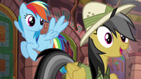 Daring Do --...has an Alicorn on it!-- S6E13