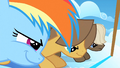 Filly Rainbow and the colts ready to race S1E23.png