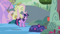 Fluttershy 'with pleasure' S2E2.png