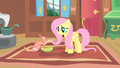 Fluttershy and Philomena2 S01E22.png