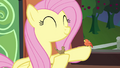 Fluttershy and a bird on the train S4E22.png