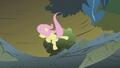 Fluttershy falling S01E07.png