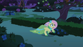 Fluttershy galloping S01E26.png