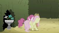 Fluttershy jostling Pinkie Pie S2E01