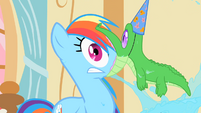 Gummy latched onto Rainbow Dash's face S1E25
