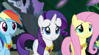 Ponies smiling at Twilight's speech S4E2
