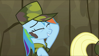 Rainbow Dash -One tough stain for one lame dragon...- S2E21