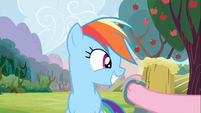 Rainbow Dash being offered Cider 2 S2E15