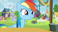 Rainbow Dash excited S4E22